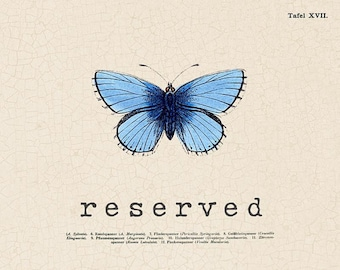 RESERVED for Barbara
