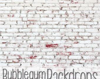 White Painted Brick - Vinyl Photography Backdrop Floordrop Prop
