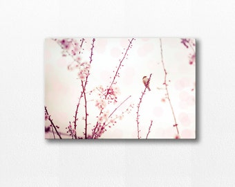 canvas print nursery wall art canvas art bird brints bird decor photography canvas nature photography cherry blossom art pink pastel cream