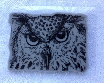 Look Into My Eyes - Cling Stamp - Owl - Stampendous - Halloween - Fantasy - Cards - Invite - Owl Post