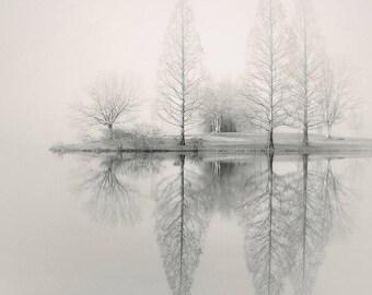 foggy landscape photography, lake house art, lake house decor,  fog photography, fine art landscape, tree photography, winter photography