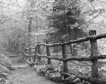 Appalachian Trail, smoky mountains, landscape print, forest print, Appalachian trail print, path, trail,  black and white photography