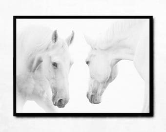 Printable horse art, large horse print, horse wall art poster, digital download poster, two white horses photography, modern animal print
