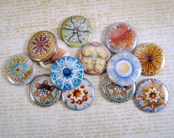Haeckel Life Flatback Buttons, Pins, Magnets 12 Ct.