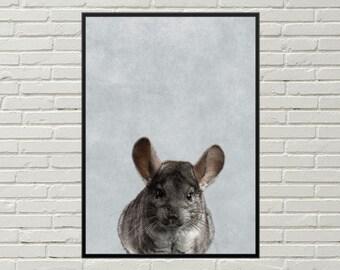 CHINCHILLA print, nursery  art print, animal art, chinchilla poster, chinchilla art, poster design, digital print, animal print, cute animal