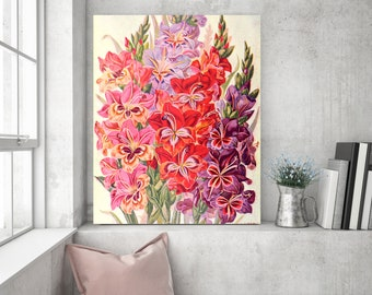 Art Print: Gladiolas Illustration Poster