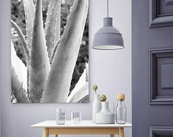 Cactus Prints wall art, Plant Photography, Printable Wall Decor, Desert Photo, Cacti Digital Download, Home decor, Modern style Poster #P031