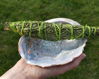 Vintage Abalone Shell Smudge Dish with Handmade Cedar/Healing and Cleansing Home Purification Set/Witchcraft Supplies/Metaphysical Healing
