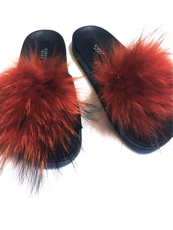 Orange Raccoon Sliders