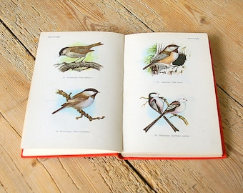 Vintage bird guide.Vintage bird illustrations.Vintage bird book.Collage page.Journal deco.Bird field guide.Book pages birds.Owls.Home decor