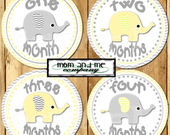 12 Baby Boy Elephant Monthly Stickers Baby Stickers Baby Shower 1- 12 Months onepiece sticker infant monthly stickers grey yellow