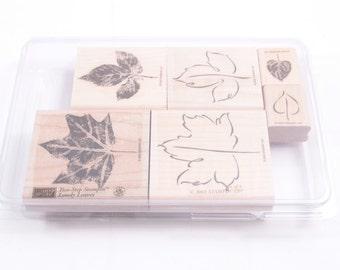 """Stampin Up """"Lovely Leaves"""" - Nature -  STAMP SET - Vintage - Card Making - Crafts ~ 170216"""