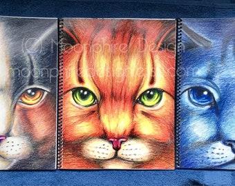 Warrior Cats Notebook / Sketchbook / Journal Warriors Firestar Bluestar Spottedleaf Book Christmas Holiday Gift School