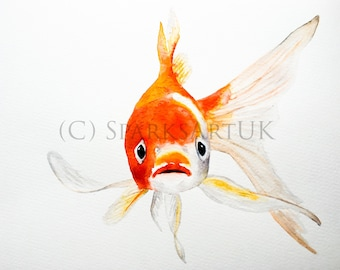 MNO Goldfish - print of original watercolour painting