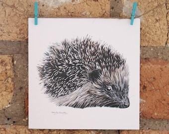 Illustrated Hedgehog Card