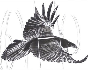 Fine Art Print Graphite Sketch Drawing-- The Raven in The Breakthrough Series (3 of 8)