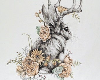 Jackalope - 8 x 10 woodland rabbit art print