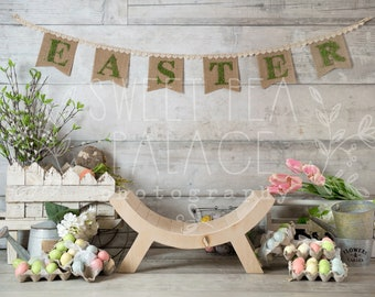 Baby Toddler Child Photography Prop Digital Backdrop for Photographers -  EASTER SET DIGITAL Backdrop