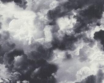 Gray Cloud Fabric Timeless Treasures Wicked Eve C3763, Cloud Landscape Fabric, Halloween Fabric, Stormy Sky Fabric, Gray Sky Fabric, Cotton