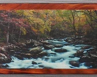 Mountain Stream Wilderness -- on wood