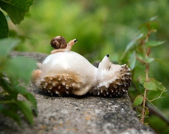 Sleepy Hedgehog and Snail Fairy Garden Terrarium Accessories Miniature Woodland Accessory Decoration