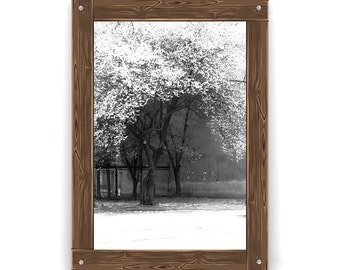 Photo - CityScape- Łódź-Poland-Blooming Tree-Wall Art-Urban Photography-Black and Whiteh-Modern Home Decor-Contemporary