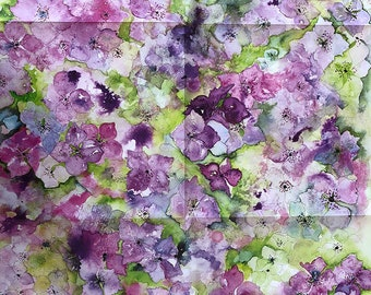 Hydrangea - Wrapping Paper