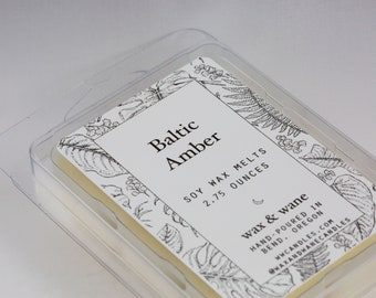 Baltic Amber Soy Wax Tart - Wax Melts -  Amber Scented Wax Cubes - Clamshell Melts - Soy Candle Melts - Natural Soy Wax Tarts  Ready to Ship