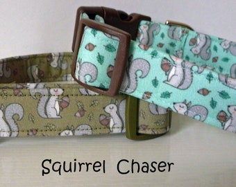 "Squirrels Dog Collar- Forest Dog Collar- Funny Dog Collar - Girl Dog Collar, Boy Dog Collar-Squirrels on Mint or Olive - ""Squirrel Chaser"""