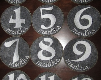 Applique 12 months Circle Applique Patches fits 5x7 Hoop for Embroidery Machine - Automatic Download Multiple Formats