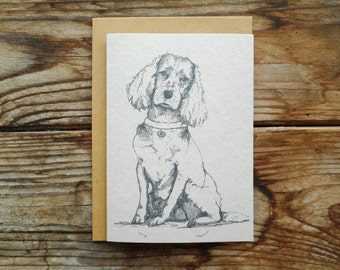 Dog Note Cards: 10 Pack; ~Spaniel