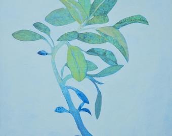 Salbei (grün), original Gemälde, Malerei, Küche Dekoration, Gewürz, Heilpflanze
