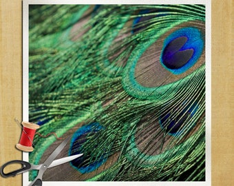 Peacock Feather bird Photography - Cushion Panel Upholstery Cotton Fabric Craft Panel, Sewing Quilting