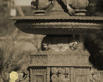 Outdoor Photograph, Aged and Worn Cast Swan Statue Fountain in Sepia Tones, Fine Art Photography of Americana