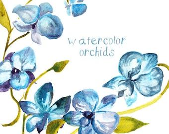 Watercolor Hydrangeas and Orchids clip art flower clip art flowers watercolor digital clip art illustration digital watercolors floral blue