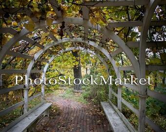 Grape Arbor - Digital Backdrop - Brick Path - Garden Arbor Backdrop - Country Garden Backdrop - Photography Backdrop - Arched Trellis