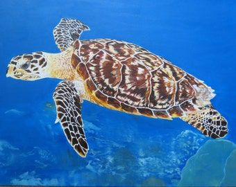 Sea Turtle Swimming Original Oil Painting with Solid Maple Frame 25.5 x 31.75 by Shannon Ivins