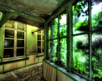 "Abandoned building belgium surreal interior architecture green nature ""Emerald Gardens"""
