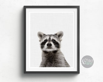 Racoon Wall Art, Black And White Animal Photography, Nursery Wall Art Print, Nursery Decor, Printable Art, Animal Photo Print, Cute Art