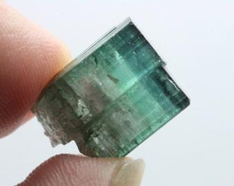 Tourmaline, Pederneira Mine, 2005 Blue Green Pocket, Minas Gerais, Brazil E629