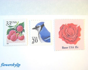 Red Rose Wedding Postage Stamps, Red Berries - Blue Jay - Blue Berries Stamps, Mail 20 Invitations, 71 cents vintage unused postage 2 ounce