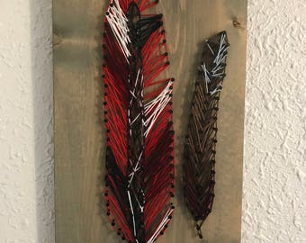 Male and Female Cardinal Feathers - Nail and String