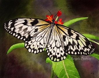 Butterfly Painting Print, Butterfly, Color, Realism, 5 x 7, Home Decor, Watercolor, Giclee, Art Print, Insect, Nature, Spring