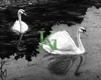 "KG Cards ""Swans"" Greeting Card"