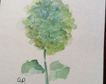 Green Hydrangea Watercolor Card / Hand Painted Watercolor Card