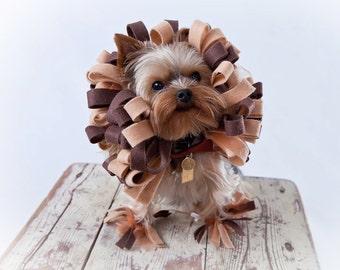 Lion Dog Costume - Saved for Christen