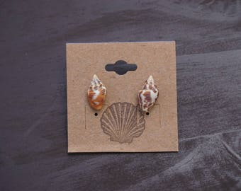 Dove shell earrings