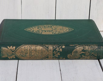 The New Forest It's History and Scenery - Antiquarian book - Decorative book - topography - Walter Crane illustrations - English countryside