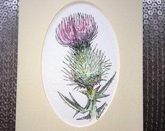 Original ink drawing ~ thistle ~ presented in a blank card wallet
