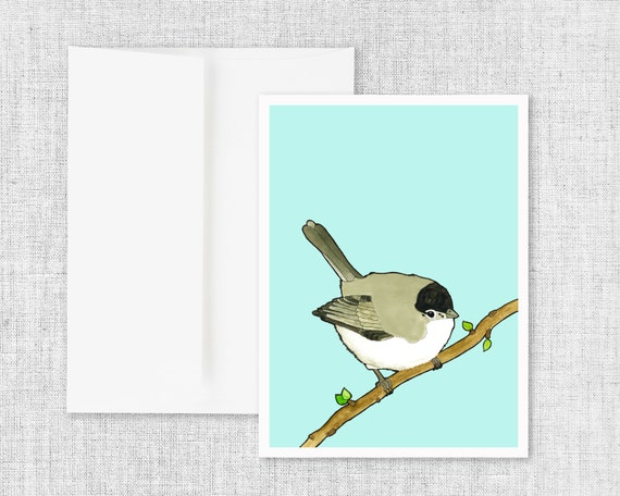 "modern greeting card, blank greeting cards, greeting card set, watercolor bird art, nature drawing, pen and ink - ""Black-tailed Gnatcatcher"""